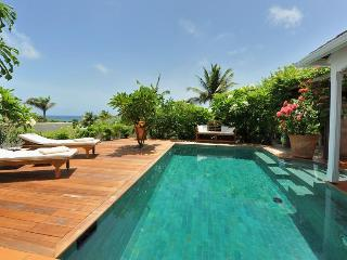 Gorgeous 1 bedroom Villa in Marigot - Marigot vacation rentals