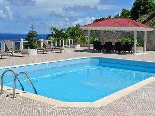 Perfect 4 bedroom Villa in Toiny - Toiny vacation rentals