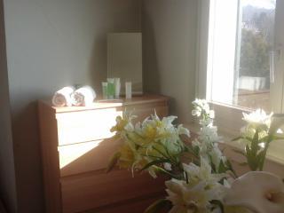 1 bedroom Villa with Internet Access in Zurich - Zurich vacation rentals