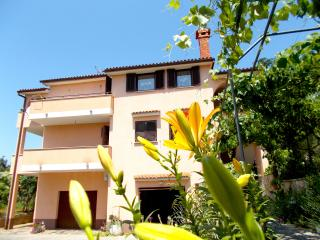 ONE BEDROOM APARTMENT WITH TERRACE AND SEA VIEW - Porec vacation rentals