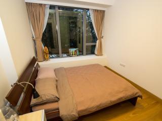 Spacious bedroom in modern condo - Singapore vacation rentals