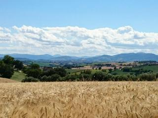 Bed and Breakfast Le Marche Italy - Montefano vacation rentals