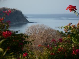 Casa Azul, Playa Samara, Guanacaste - Playa Samara vacation rentals