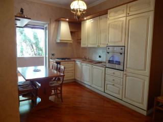 Vatican area-Shiny and comfortable apt-air cond - Rome vacation rentals