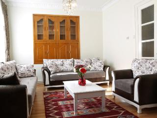 Sultanahmet - Unbeatable Location, Space&Comfort - Istanbul vacation rentals