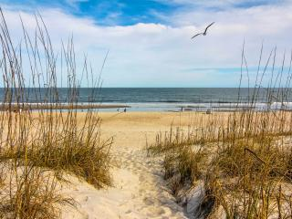 Perfect Condo with Internet Access and A/C - Fernandina Beach vacation rentals