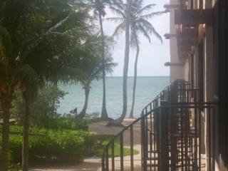 Oceanfront Islamorada Condo with Huge T-Dock - Islamorada vacation rentals