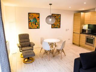 Luxury City Centre Apartment 2 - Norwich vacation rentals
