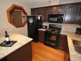 Whistler Village Rental Accommodations By Owner - Sean Dolynski - Whistler vacation rentals