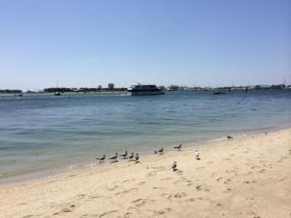 Maison mobile Riviera beach 5mn de la mer - Riviera Beach vacation rentals