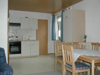 Vacation Apartment in Fuchsmühl - 619 sqft, nice location, affordable, surrounded by nature (# 59) - Fuchsmuhl vacation rentals