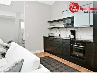 Modern Apartment in the Heart of Gothenburg - 6266 - Gothenburg vacation rentals