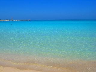 Villa Il Baglio near the beach with 4 bedrooms - San Vito lo Capo vacation rentals