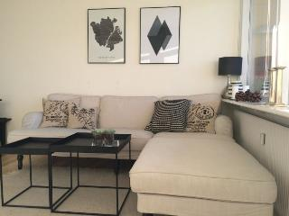 Copenhagen apartment near Forum metro - Copenhagen vacation rentals