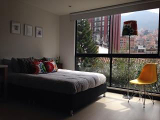 Designer Studio with a view - Bogota vacation rentals