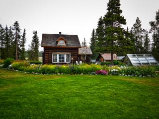 Cozy Cottage with Hot Tub and Water Views - Nemaiah Valley vacation rentals
