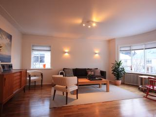 Bright, spacey and centrally located - Reykjavik vacation rentals