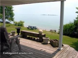 Loons Landing In Brighton On Lake Ontario - Cobourg vacation rentals