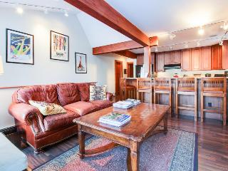 Walk to slopes from mountain condo close to gondola & town! - Aspen vacation rentals