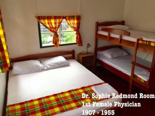 De Kleine Historie Guesthouse - Paramaribo vacation rentals