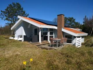 Nice Villa with Internet Access and Wireless Internet - Fanø vacation rentals