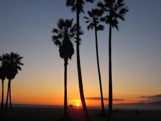2 BD, 1 BA, Sleeps 8, YARD and Private Parking - Santa Monica vacation rentals