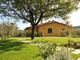 Villa in Montelupo Fiorentino, Tuscany, Florence, Italy - Montelupo Fiorentino vacation rentals