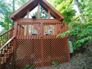 3 B/R, 3/12 bath near Dollywood - Sevierville vacation rentals