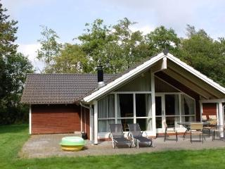 Nice Villa with Internet Access and DVD Player - Oksboel vacation rentals