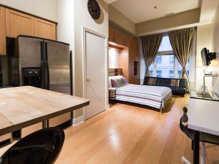 Suite in the Financial District (Downtown) - Toronto vacation rentals