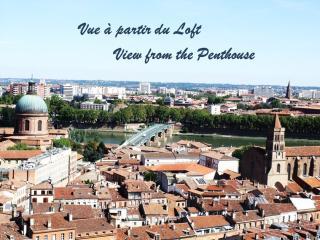Loft Haut de Gamme avec Prestations Hotelières - Toulouse vacation rentals