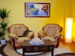 Comfortable 1 bedroom Shkoder Condo with Internet Access - Shkoder vacation rentals
