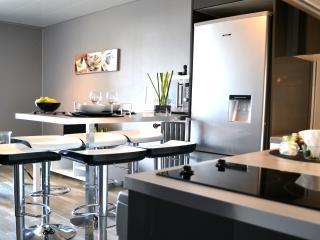Appartement de Grand Standing avec Vue Magnifique - Toulouse vacation rentals