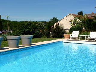 Nice House with Internet Access and Central Heating - Carnac-Rouffiac vacation rentals