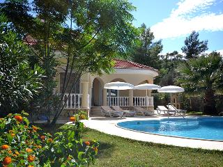 Beautiful Villa with A/C and Satellite Or Cable TV - Dalaman vacation rentals