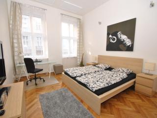 Stylish Downtown Studio Apartment - Prague vacation rentals
