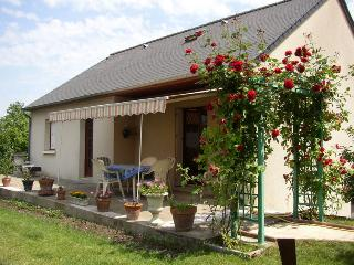 Nice House with Internet Access and A/C - Chinon vacation rentals
