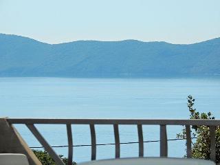 03201 Beautiful apartment with seaview - Pinezici vacation rentals