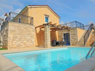 06401 Luxury villa with private pool - Pinezici vacation rentals
