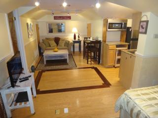 Comfortable Nokomis Studio rental with Internet Access - Nokomis vacation rentals