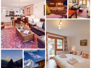 5*4 Gäste/85m2 top Lage und privatem Garten - Zermatt vacation rentals