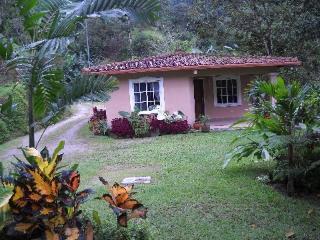 Tropical Escape House in El Valle - El Valle de Anton vacation rentals