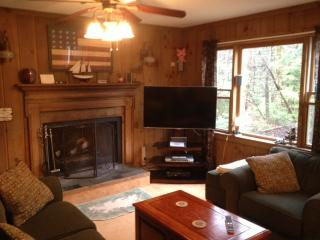 Chalet minutes from Mount Snow and Pet Friendly - Wilmington vacation rentals
