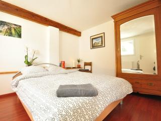 Comfortable 1 bedroom Condo in Wilderswil - Wilderswil vacation rentals