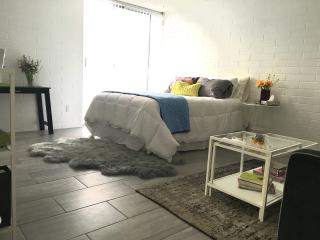 BLOCKS from DT - New Palm Springs Studio - Palm Springs vacation rentals