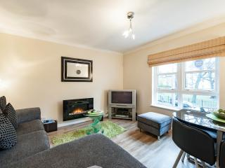 Lovely 2 bedroom Edinburgh Condo with Central Heating - Edinburgh vacation rentals