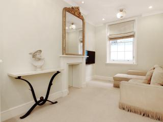 Super Knightsbridge Air Conditioned 1 Bedroom WiFi - London vacation rentals