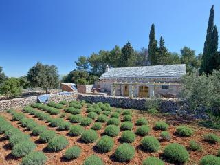 Beautiful 2 bedroom House in Jelsa - Jelsa vacation rentals