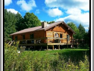 Perfect Cabin with Internet Access and Fireplace in Shingleton - Shingleton vacation rentals