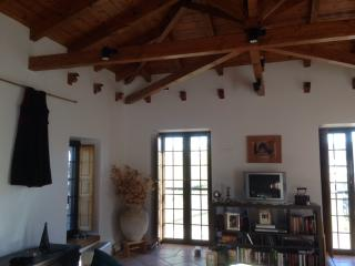 NEW VILLAGE HOME ON TOP OF A HILL - Peloponnese vacation rentals